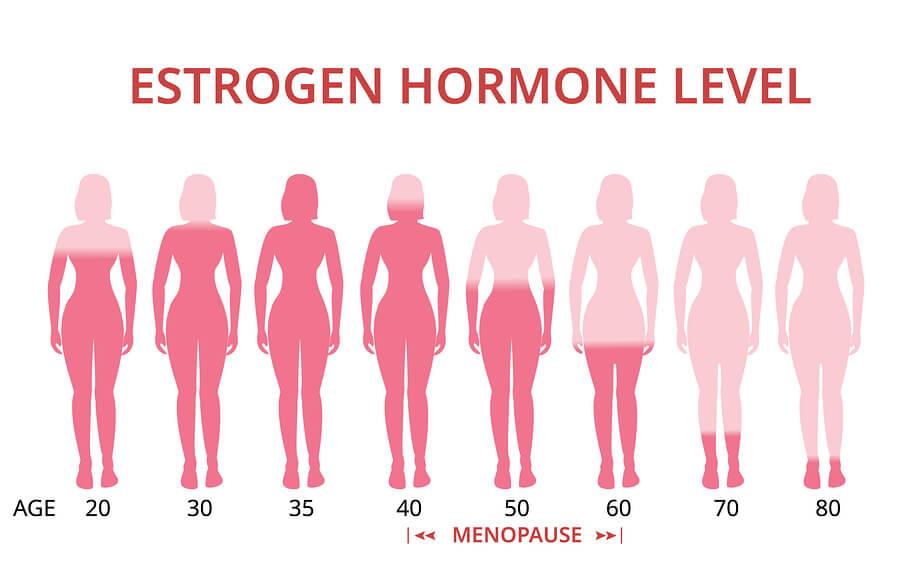 östorojen hormonu seviyeleri