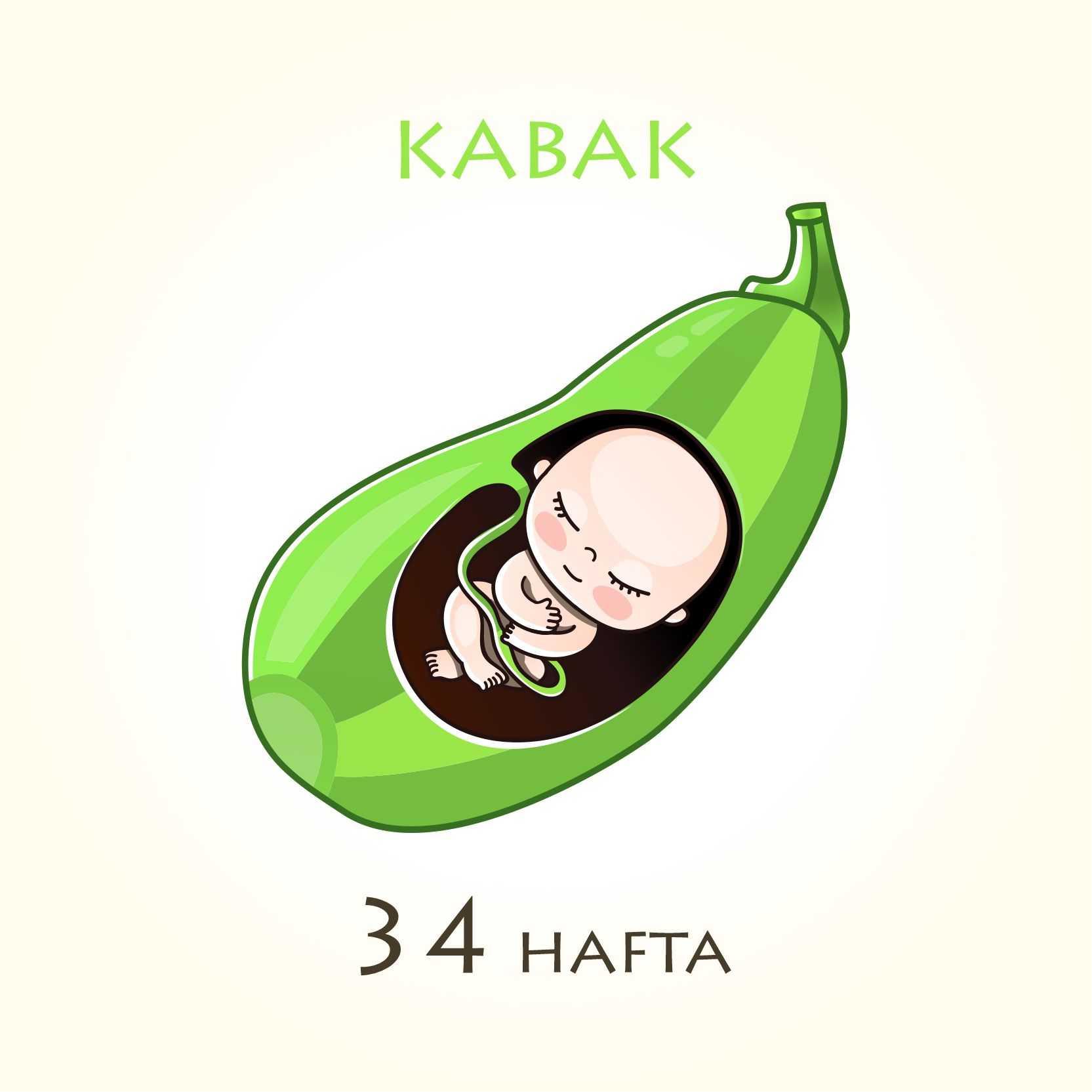 34. hafta bebek boyu