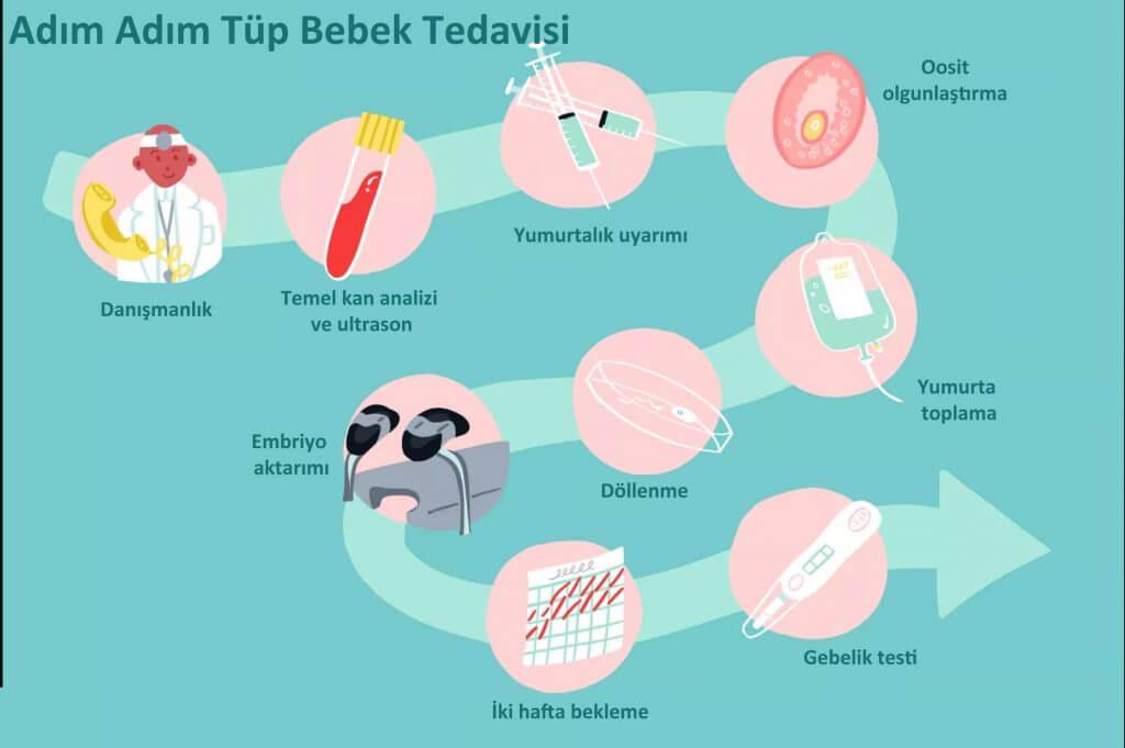 Tüp bebek tedavisi aşamaları şeması